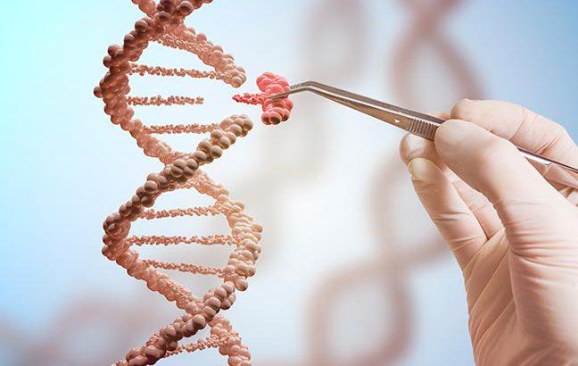 engenharia genética e manipulação de DNA